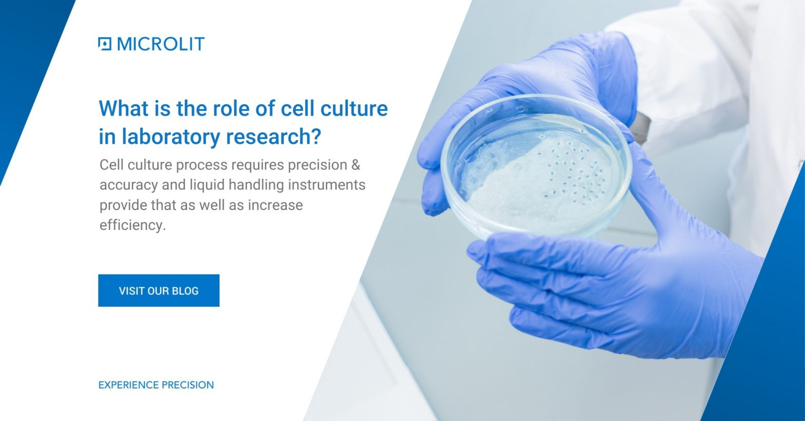 what is Cell culture